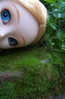 Pullip Alice and the moss bed by FriedaVanRaevels