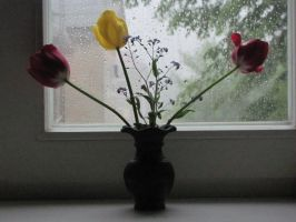 Flowers and rain by Ancip
