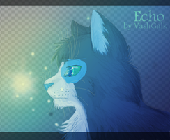 lodestar in night Commission for Echofur00 by VashGalk