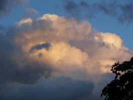 Evening Sky 3 by tammyins