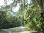 Florida Road by clipartcotttage