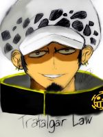 Trafalgar Law ~One Piece (colored) by ArisaKei