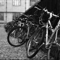 bicycles by evelynzee