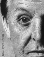 Paul McCartney by raulrk