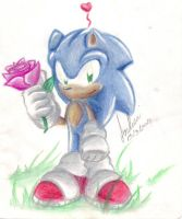 A rose for you... by andreahedgehog