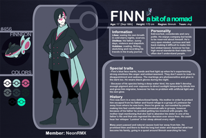 Finn Character Sheet by NeonRemix