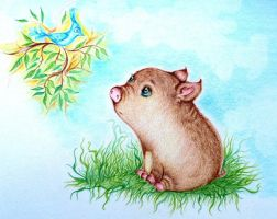 Mini pig by Trisha-N