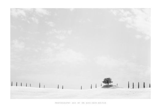 Tuscany IR - VI by DimensionSeven