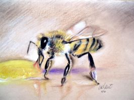 Bee by Ennete
