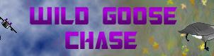 Wild Goose Chase Banner by Sunstars