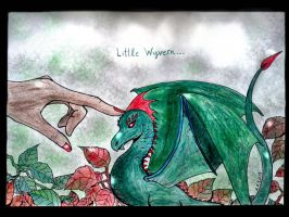 Little Wyvern... by nikoskap