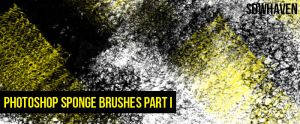 Photoshop Sponge Brushes Pt 2 by sdwhaven