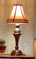 Table Lamp by SalsolaStock