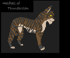 Halftail of Thunderclan by TallestSky