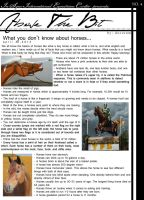 Above The Bit: Weird facts about horses by Decorum100