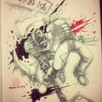 Wolverine vs Ryu Hayabusa part II by Omaiyee