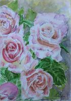 Roses by danuta50