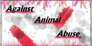 Against Animal Abuse by Animerocksthebest