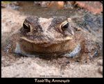 Toad'lly Annoyed by GD-litenin