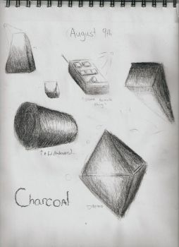 3D Study: Charcoal by SkyTheArtist