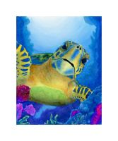 Sea Turtles 2 by chrisfire1