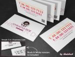 Simple 2 in 1 Business Card by khaledzz9