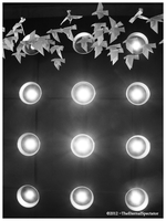 Migration by TheEternalSpectator