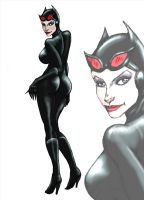 c_catwoman by Selkirk by carol-colors