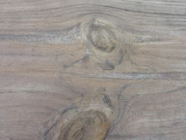Wood Grain 1 by Ox3ArtStock
