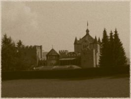 old pic, the castle by davdiana