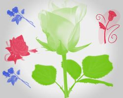 Roses brushes 2 by Radyb