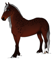 5825 AS Joxer The Mighty by AhernStables