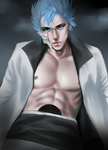 Grimmjow by royial