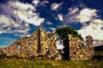 The Ruins of Cartington by Nigel-Hirst