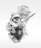 Wicket by jasonpal