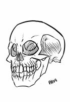 Just a skull... by gpanthony