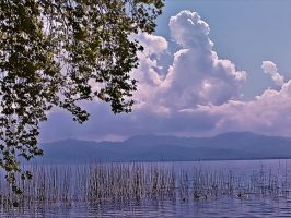 refined grace by panos-gr