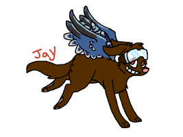 Jay OC for ShatteredOaks by Woofsufsifs