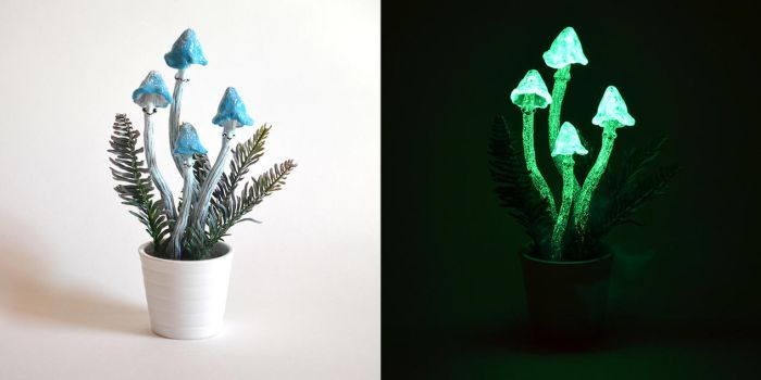 Glowing Blue Shrooms (day and night) by falauke
