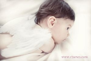Cutie Angel by ciseren