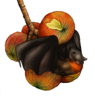 Fruit Bat by DancingfoxesLF