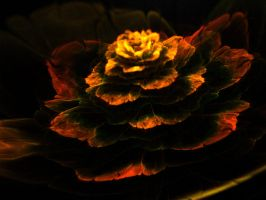 Rose autumn. by Kondratij