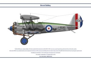 Bulldog GB 17 Sqn 2 by WS-Clave