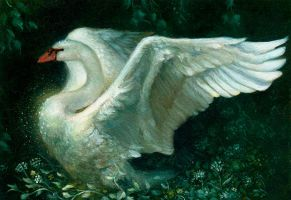 Jewelled Swan - Oil by Kaelycea