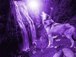 Purple Wolf by Khalla