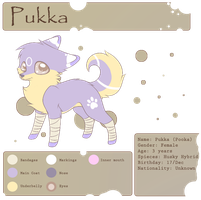 .:Pukka Reference Sheet 2012:. by Korollily