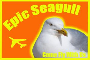 EPIC SEAGULL by ArcaneApostate