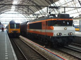 zwolle arrives at zwolle by damenster