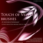 Touch of Velvet Brushes by differentxdreamz