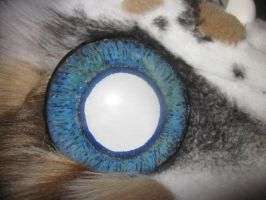 new eyes for Cyclone by LilleahWest